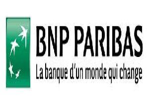 logo-bnpparisbas-argeles-2015