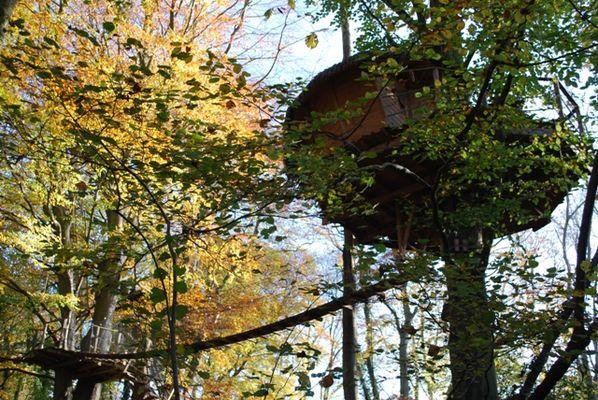 La Chaussée - Cabanes - Clair Soleil et sa terrasse