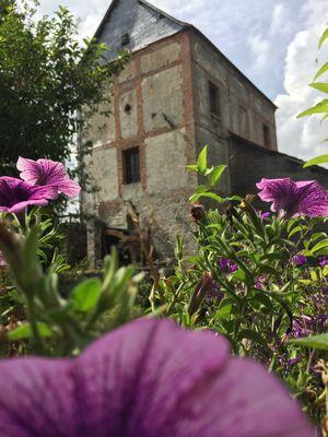 Moulin Arbalète Fleurs