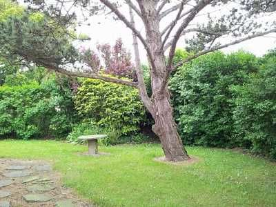 Quiberville - Villa Bel Horizon - M. Mariaux - Jardin