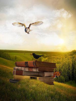 Livres_de_contes