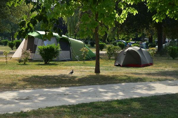 Camping au Bord du Loir - Le Lude - emplacements nus (16)