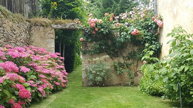 Jardin-des-Langottières-Cheviré-le-Rouge-Baugeois-Vallée-5