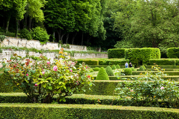 Jardin du chateau_Poncé_JP Berlose (5)