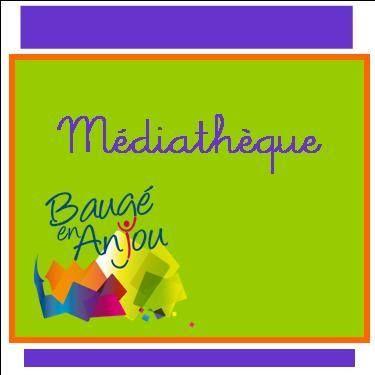 LOI49-mediatheque