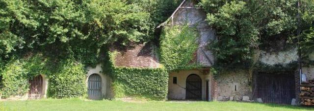 Les-caves-de-Gue-Luneau_image_article_large