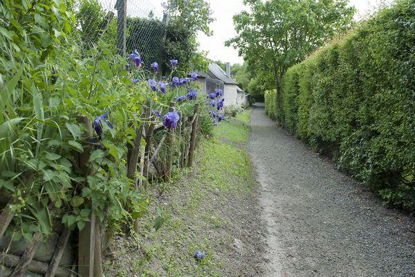 Les ruelles du Parcours Patrimoine de Neuvy-le-Roi1B