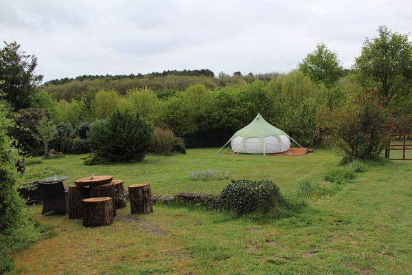 Loire-Valley-Llamas-Lavernat--13-