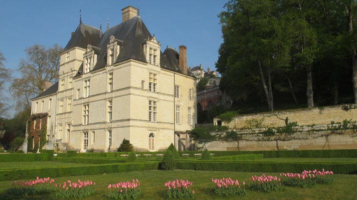 PCU879000438 - chateau et tulipes 2