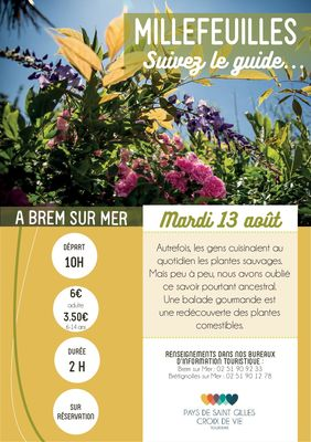 Millefeuille-BRM13aout