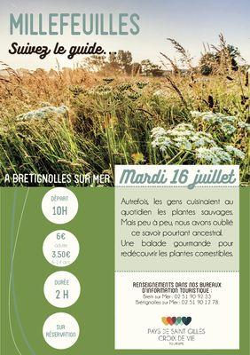 Millefeuilles_BRT16juillet