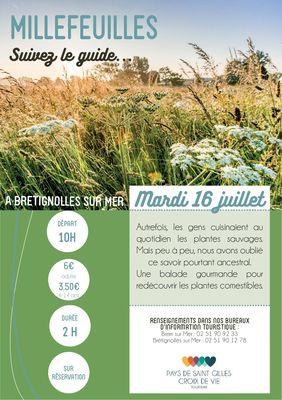 Millefeuilles-BRT16juillet