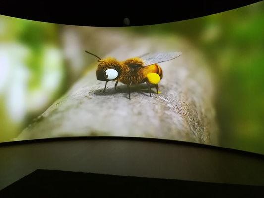 Folie-Finfarine-abeille