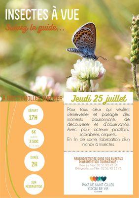 Insectes-a-vue-BRT25juillet