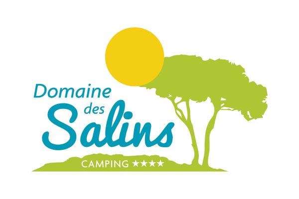 LOGO DOMAINE DES SALINS 4 etoiles