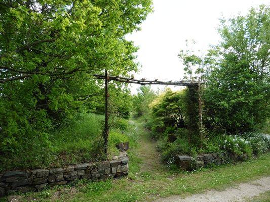 meublé-gite-le-pas-d-ane-saint-michel-le-cloucq-85200-9