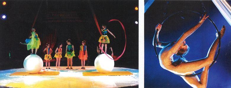 animations cirque 201o parc de pierre brune mervent 85200