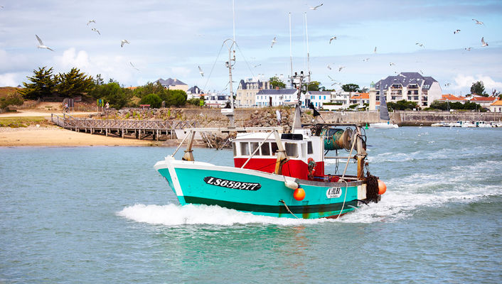 bateau de pêche saint gilles croix de vie3
