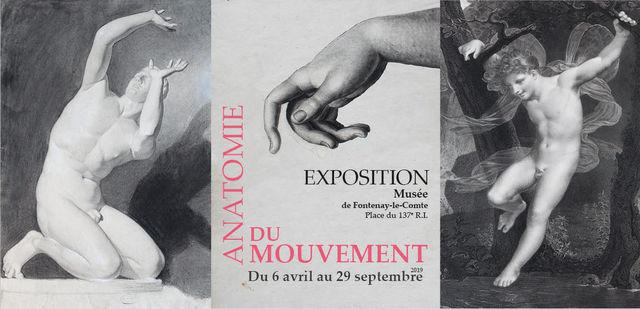 expo-anatomie-du-mouvement-fontenay-le-comte