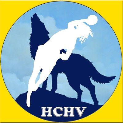 hand-ball-club du Havre de Vie