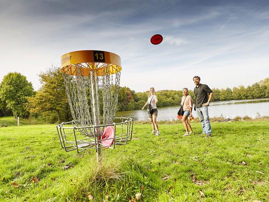 le-grand-defi-disc-golf-st-julien-des-landes-85-loi-1