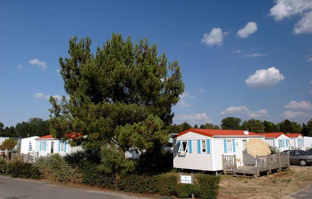 location-saint-hilaire-de-riez-camping-odalys-etang-de-besse-14