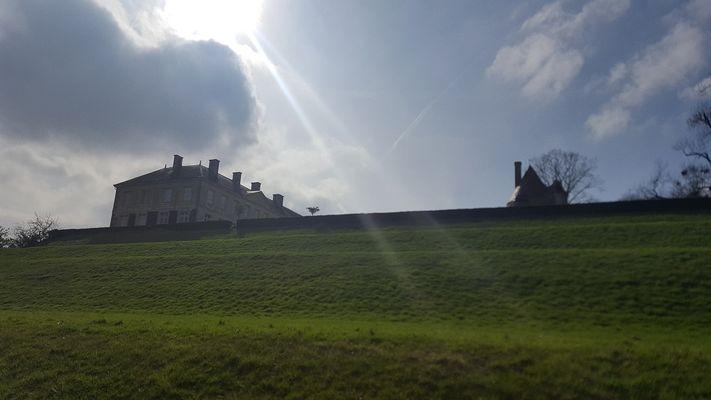 parc-du-chateau-de-l-hermenault-85570-9