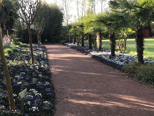 parc floral court d'aron (2)