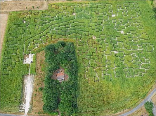 vue aérienne labyrinthe st hilaire