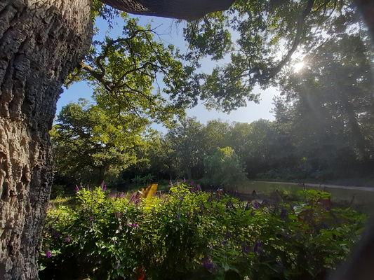 vue-du-parc-floral-court-daron