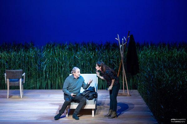 ©P. Ducap - Festival de théâtre de Terre-Neuve 2019 - La ménagerie de verre -Tu te souviendras de moi