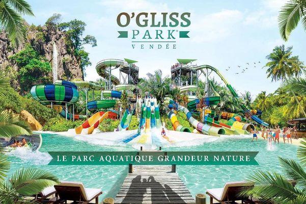 2017 - Ogliss