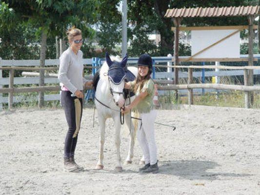 Pole equestre de montauban activites sportives centre equestres montauban