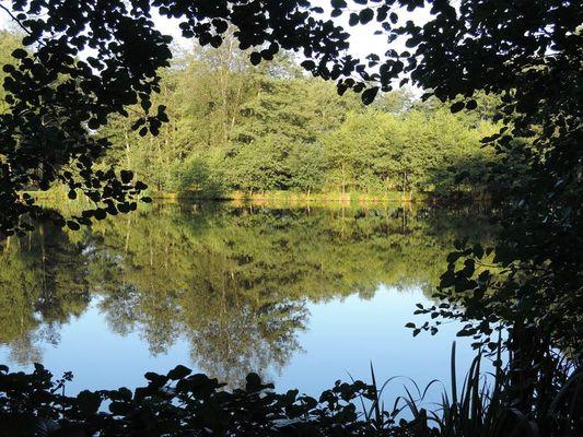 Près du Lac (3)