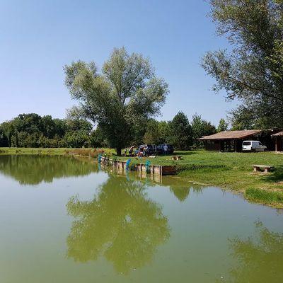 Lac de la Clare, nature, Montauban, Tarn-et-Garonne, Lac de pêche