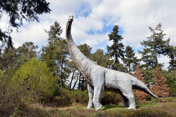 parc de prehistoire de bretagne - malansac - morbihan bretagne sud-09