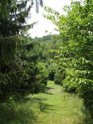 Jardin parc