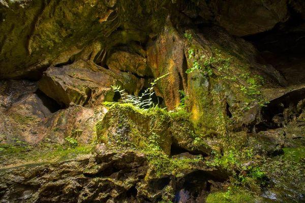Grotte de Nichet