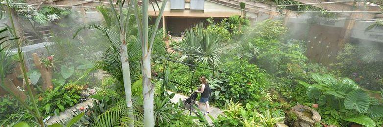 jardin-aux-papillons-morbihan-bretagne-sud-09
