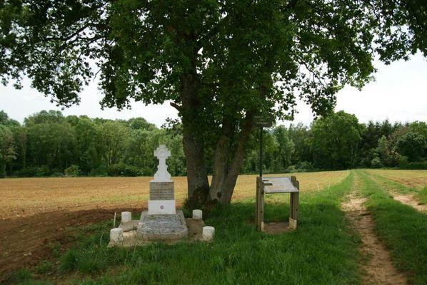 Tombe de Camille Varaigne