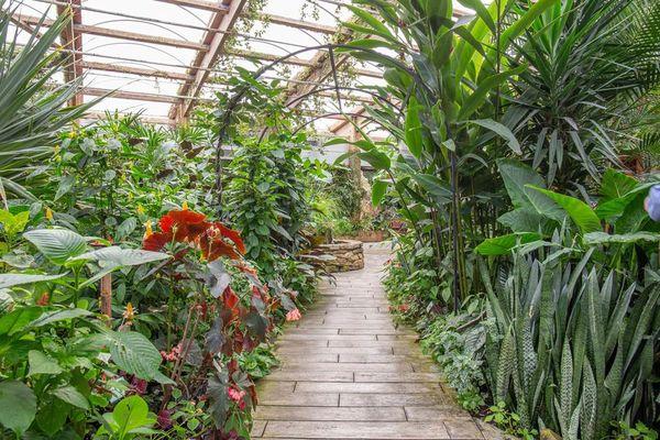 jardin-aux-papillons-morbihan-bretagne-sud-29
