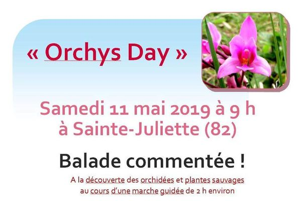 orchys day