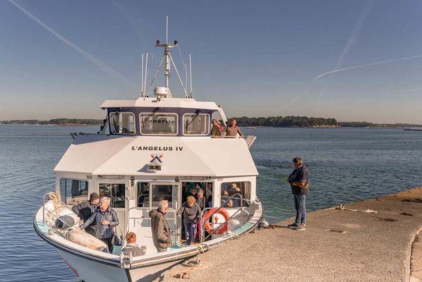 Vedettes-l'Angélus-Locmariaquer-Morbihan-Bretagne-Sud-11