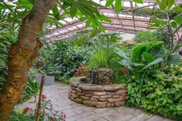 jardin-aux-papillons-morbihan-bretagne-sud-28