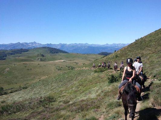 écrin des cimes, les chevaux en randonnée