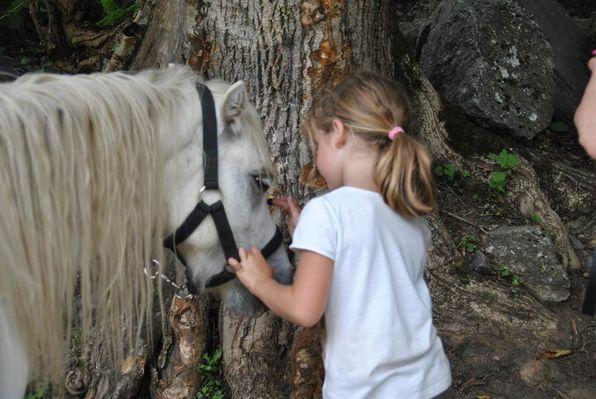 écrin des cimes, les enfants et les poneys
