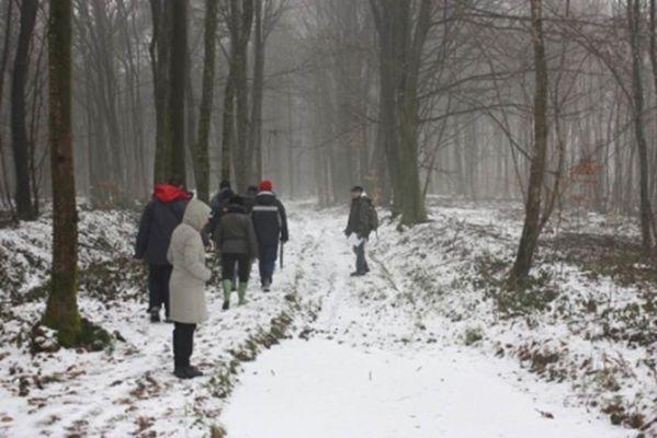 Découverte de la forêt en hiver