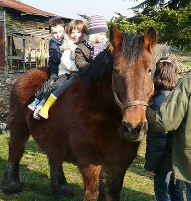 les enfants sur le cheval de trait