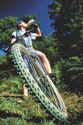 Carolo Cycles - location de vélos