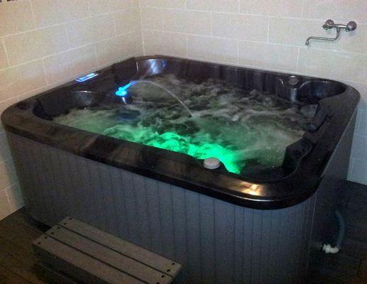 Gîte de La Héronnière : spa